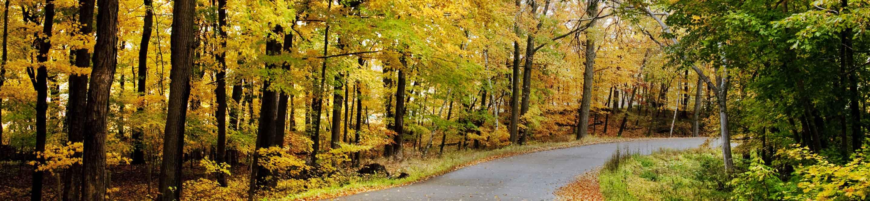 Car Title Loans Wisconsin